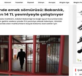 Cezaevlerinde emek sömürüsü: Bakanlık, mahkûmları 14 TL yevmiyeyle çalıştırıyor